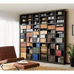 1cmピッチ薄型壁面書棚 奥行19cm 幅42cm 上置き高さ55cm オープン (ア)ダークブラウン色見本