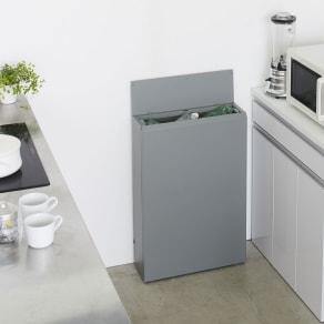 キッチン奥にも置ける 奥行スリムダストボックス 大タイプ(幅50cm・奥行18cm・高さ75.5cm) 写真