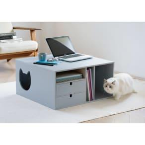 ネコと楽しむミニテーブル (猫が遊べるトンネル付きリビングテーブル) 写真