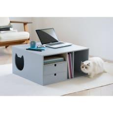 ネコと楽しむミニテーブル (猫が遊べるトンネル付きリビングテーブル)