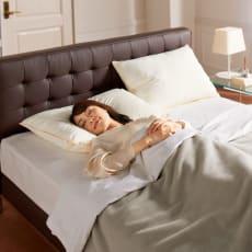 フィベールピロープレミアム 枕のみ 大判(高さが選べる2個セット)