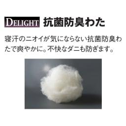ブレスエアー(R)敷布団 デラックス シンプルセット 寝汗のニオイが気にならない抗菌防臭わたで爽やかに。不快なダニも防ぎます。