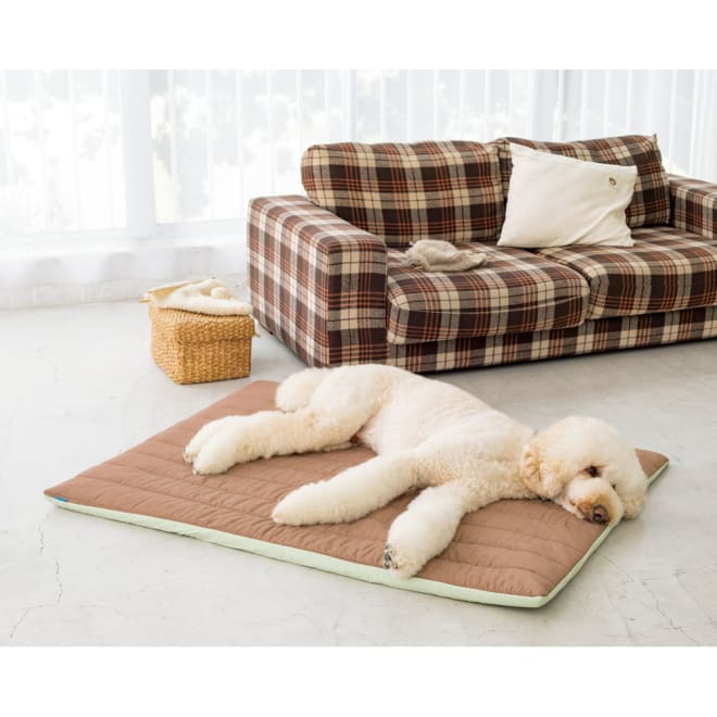 エアーラッセル使い ペットの体にも優しい敷き布団シリーズ 敷き布団 Lサイズ(約100×130cm)