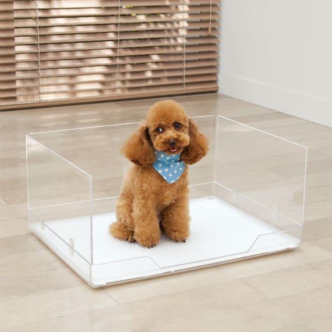 クリアトワレ飛散ガード付き レギュラーサイズ ペット用トイレ 小~中型犬用(体重約5kg以下対応) 一番人気のサイズ♪男の子のワンちゃんには特におすすめの飛散ガード付きタイプ。ワイドタイプ(約60×45cm)のシーツ推奨。クリアトワレと飛散ガードのセット。