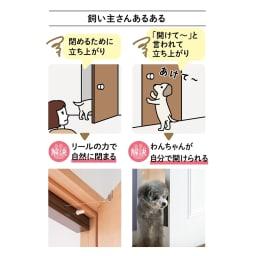 ペット用ドア開閉アイテム「わんにゃんフリーパス」 リールが巻き取られ、開いたドアが自然にゆっくり閉まります。 溝が付いた扉用カバーで前足や鼻先を引っかけ、自分で開けられます。