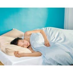 ミクロガード(R)プレミアムシーツ&カバーシリーズ 掛けカバー 2段ベッド用 (イ)ブルー