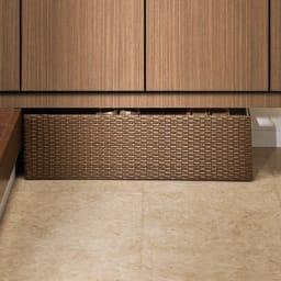ラタン調の下駄箱下に収まるシューズワゴン 幅60cm 玄関の下駄箱下のスペースにすっきりと収まります。(※写真は幅80cmタイプ)