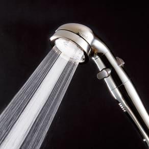 アラミック 手元ストップ節水シャワーヘッド プロ・プレミアム(ステンレスコート スカルプケアモデル) 写真
