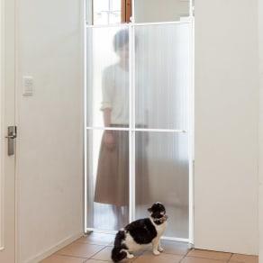 猫の脱走防止用突っ張り式パーテイション 写真