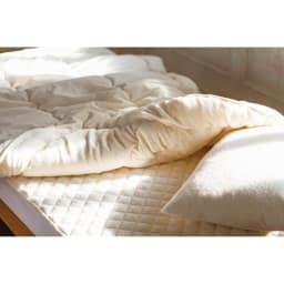 ふわふわ今治タオルの寝具シリーズ 掛け布団 今治製タオル地でつくったおふとん、とは贅沢!あたたかさと爽やかのいいとこ取りで春夏秋と長いシーズン心地よく使えます。