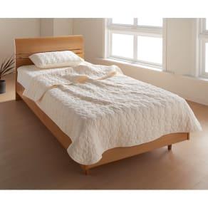 掛け敷き枕カバー3点セット (パシーマ(R) pasima EX お得なセット(シングル)) 写真