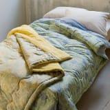 V&A アネモネ柄シリーズ 洗える肌掛け布団 シングル 写真