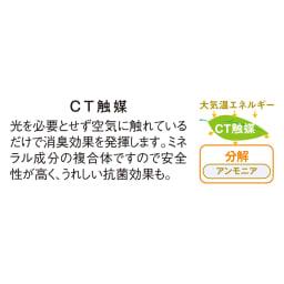CT触媒インテリアグリーン スマートストレリチア 高さ140cm 光のあまり入らない場所でもCT触媒の効果によって、アンモニア臭やホルムアルデヒドを分解。