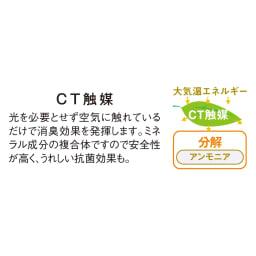 CT触媒インテリアグリーン マウンテンアッシュ 高さ150cm 光のあまり入らない場所でもCT触媒の効果によって、アンモニア臭やホルムアルデヒドを分解。