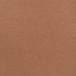 カテキン消臭&はっ水 おくだけ吸着タイルマット 大判タイルマット(60×45cm) (ウ)ブラウン