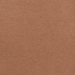 カテキン消臭&はっ水 おくだけ吸着ロングマット(1枚)(幅60cm) (ウ)ブラウン