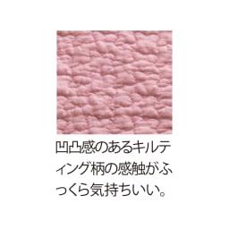 イブルシリーズ ピローケース普通判(2枚)