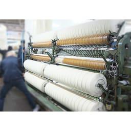 【三井毛織】エジプト超長綿やわらか綿毛布 敷き毛布 紡績 糸作りから起毛まで、職人の技を結集
