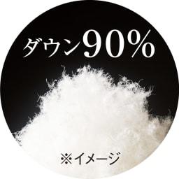 綿100%生地のダニゼロック布団 肌掛けダウンケット ダウン90%使用。 ※イメージ