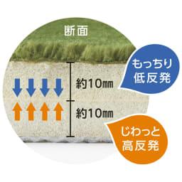 低反発高反発フランネルラグ ナチュラルカラー 上層部は低反発、下層部は高反発ウレタン使用
