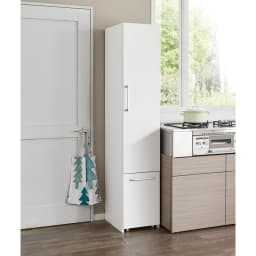 組立不要 キッチン分別タワーダストボックス 5分別 ゴミ箱タイプ 扉を閉めればゴミ箱に見えません!