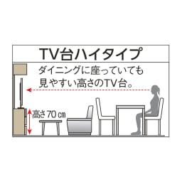 奥行44cm 生活感を隠すリビング壁面収納シリーズ テレビ台 ハイタイプ 幅120cm
