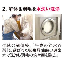 羽毛布団フルリフォームシリーズ 新バリューコース 【お得なシングル2枚】