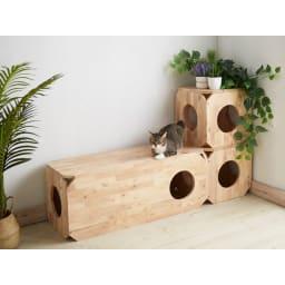 キャトハス ペットベンチ S (ペットと一緒に使える天然木ベンチ) コーディネート例 リビングベンチとして。 ※写真はSサイズを2個、Lサイズを1個使用しています。表示価格はSサイズ1個のものです。