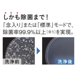 【ディノス先行販売】水栓工事のいらない食器洗浄乾燥機 販路限定カラー