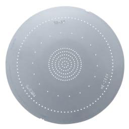 節水シャワーヘッド プロ スカルプケアモデル ※メーカー通常モデル 散水板