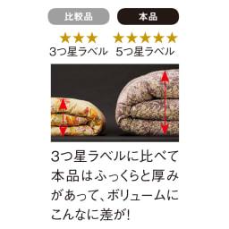 この価格スクープ級!! 5つ星ロイヤルバーゲン寝具 お得な掛け+敷きセット