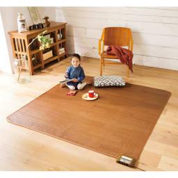 フローリング調プリント防水ホットカーペット(2畳/3畳) (ア)ブラウン