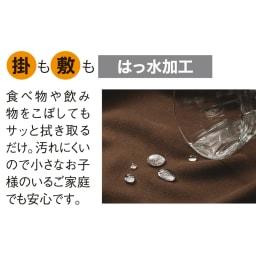 はっ水・消臭・抗菌 ふっくら贅沢ボリューム 省スペースこたつシリーズ こたつ敷き(厚さ約1.5cm)