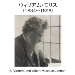 V&Aモリス監修アイリスこたつシリーズ こたつ敷き(厚さ約1cm) 近代デザインの父と呼ばれるウィリアム・モリスが監修したデザインは、ヴィクトリア アンド アルバード博物館に所蔵され、百年以上経た今も世界で愛されています。