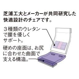 「サイズを選べる」腰にやさしいリラックスチェアII L 腰をサポートする特許構造。