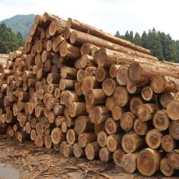 国産杉 1cmピッチ頑丈シェルフ 幅40奥行19本体高さ183cm 【国内生産にこだわった一貫ライン】国産杉を、生産から供給まで一貫体制を敷く、「兵庫木材センター」の最新技術で加工。その素材を知り尽くした地場工場にて製造し、熟練の職人によって丁寧に仕上げています。