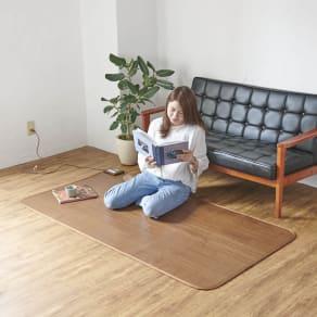1.5畳(フローリング調プリント防水ホットカーペット) 写真