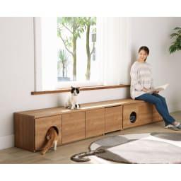 ペットと暮らす人のための 収納庫付きベンチ 幅160cm コーディネート例(ア)ブラウン ※写真は左から幅160cm、幅120cmを並べて使用しています。お届けは幅160cmです。