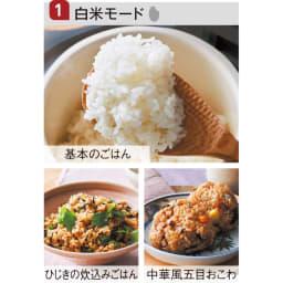 recolte 低温調理もできるコンパクトライスクッカー 7つのモードで、炊飯から副菜、スイーツ作りまでマルチに!