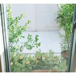 目隠しUVカット アルミ入ミラーのフィルム 75×200cm 1枚 シートを貼っても、室内からは大事に育てたお花たちがはっきり見えます。