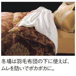 オールシルクシリーズ シルクカバー付き真綿合掛け布団 ムレやすい羽毛布団の下に真綿布団を使えば、さらに暖かさが増す上にさらさらが続きます。