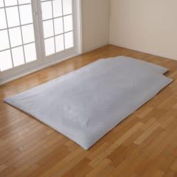 本気のダニ対策 ダニゼロック 寝心地しっかり敷布団(綿生地) (ア)ブルー ※お届は敷布団のみになります。