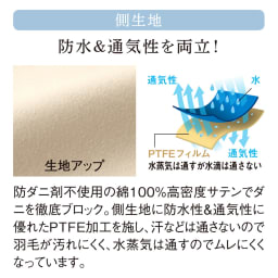 ダニゼロックお得な羽毛布団完璧セット(布団+カバー) ベッド用