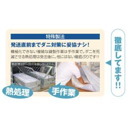 綿100%生地 本気のダニ対策 ダニゼロック ふんわり掛け布団 国内での丁寧な特殊製法だからこそ安心できます。