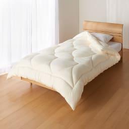 あったか洗える清潔寝具 掛け布団 ※お届けは掛け布団です。