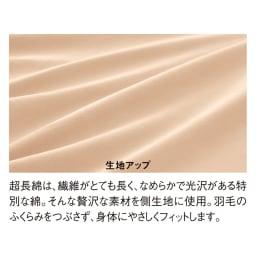 4ツ星エクセルゴールドラベル×超長綿 2枚合わせ羽毛掛け布団 (イ)ブラウン しなやかで軽い超長綿の側生地。