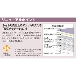 吸湿発熱パッド付き敷布団 東洋紡ブレスエアー(R)NEW デラックスシリーズ ふんわり受け止めてしっかり支える