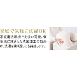 Afitお得なセットお得な掛けマットレス枕セットシングル(マットレス) 掛け布団の中わたで使用しているダンミックスの5逸 5逸「丸洗いOK」