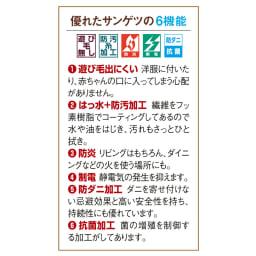 サンゲツ6機能カーペット 江戸間 3畳【フリーカット(変形)サービス】