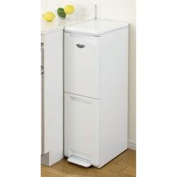 キッチンすき間収納 ダストボックス 2分別ペダル付き 本体幅が25cmなので、狭いキッチンでお悩みの方に是非!
